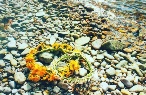 Das Bild zeigt einen Steinstrand. Im rechten Eck ist Wasser zu sehen. Sonst einige vom Wasser rund geschliffene Steine. Im Vordergrund sind zwei auf den Steinen liegende Blumenkränze. Ein Blumenkranz wurde aus gelbem Löwenzahn geflochten, der andere aus weiß-gelben Gänseblümchen.